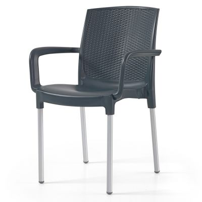 Diana Arm Chair